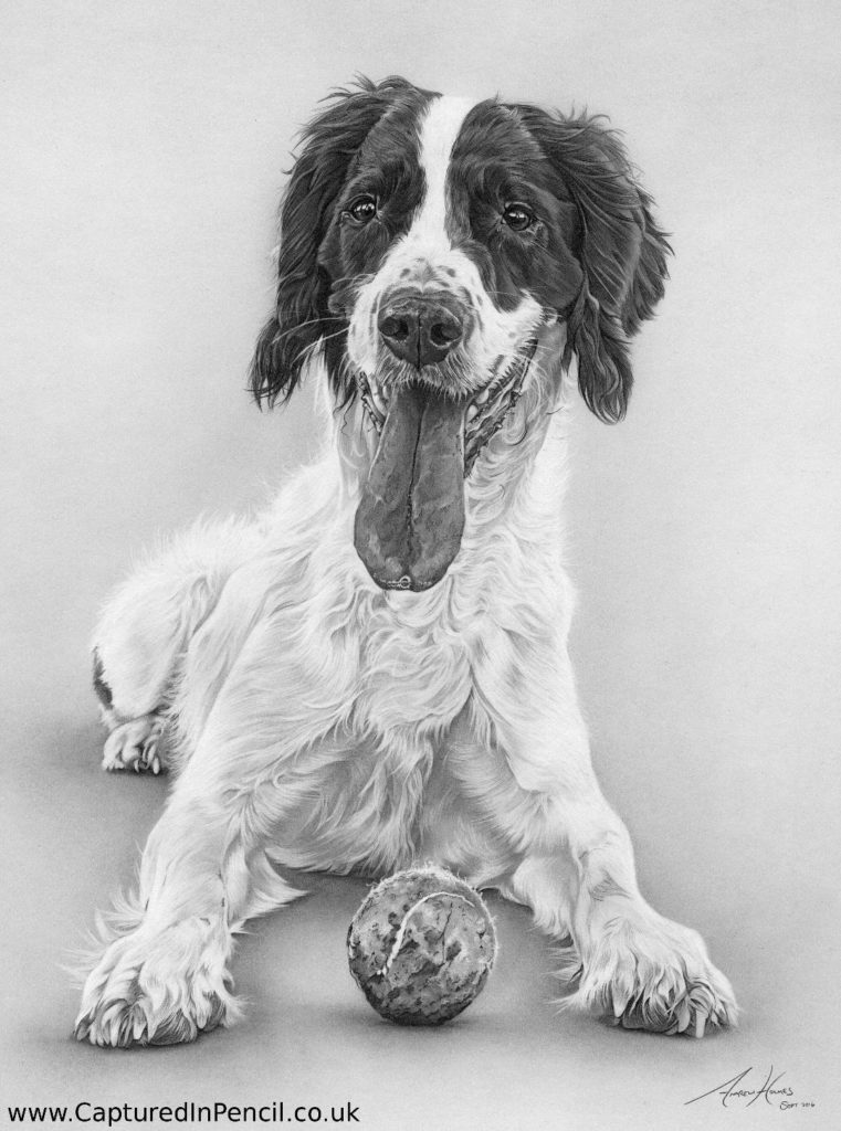 Dog with ball panting